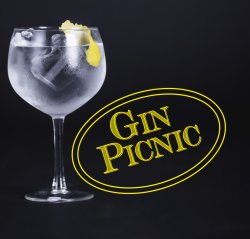 The Gin Picnic at Himley Hall logo