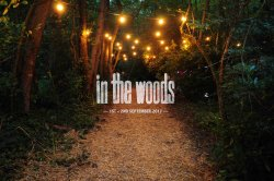 In The Woods Festival 2017 logo