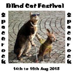 Blind Cat Festival logo