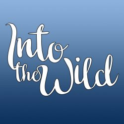 Into The Wild Fetival 2018 logo